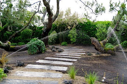 Esr atlantic 39 paysagiste entretien jardins et for Entretien jardin landes